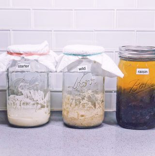 There are so many ways to get your Sourdough Starter love going!